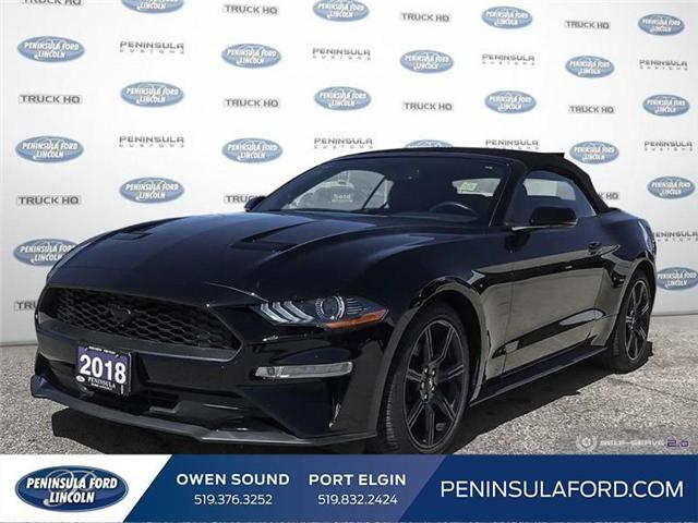 2018 Ford Mustang EcoBoost (Stk: 1683) in Owen Sound - Image 1 of 25