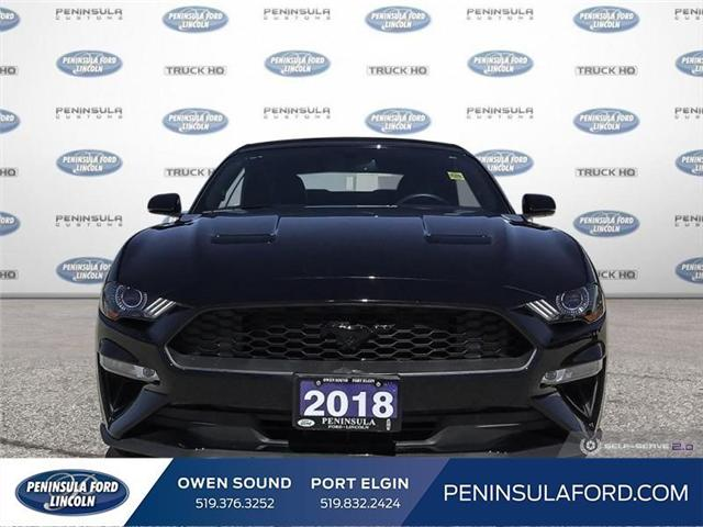 2018 Ford Mustang EcoBoost (Stk: 1683) in Owen Sound - Image 2 of 25