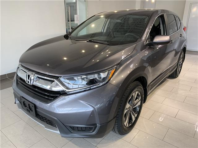 2017 Honda CR-V LX (Stk: 16126A) in North York - Image 1 of 15