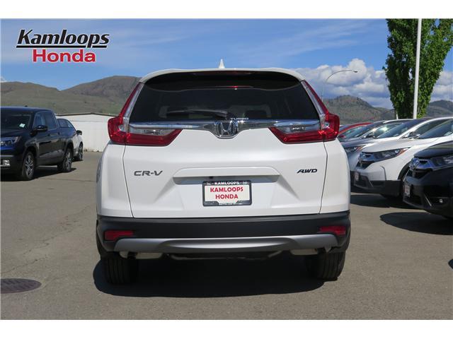 2019 Honda CR-V LX (Stk: N14380) in Kamloops - Image 5 of 19