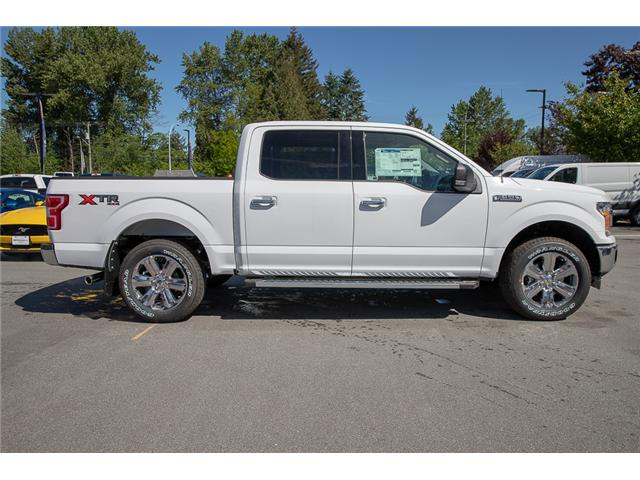 2019 Ford F-150 XLT (Stk: 9F11116) in Vancouver - Image 8 of 29