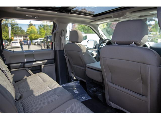 2019 Ford F-150 XLT (Stk: 9F11116) in Vancouver - Image 18 of 29
