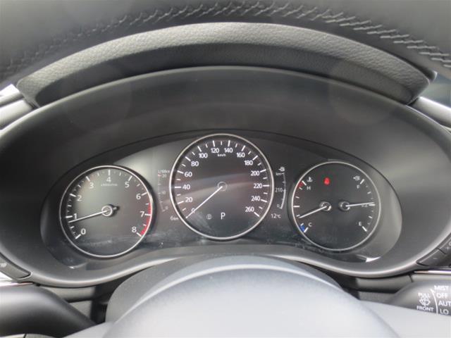 2019 Mazda Mazda3 GT (Stk: M19115) in Steinbach - Image 18 of 22