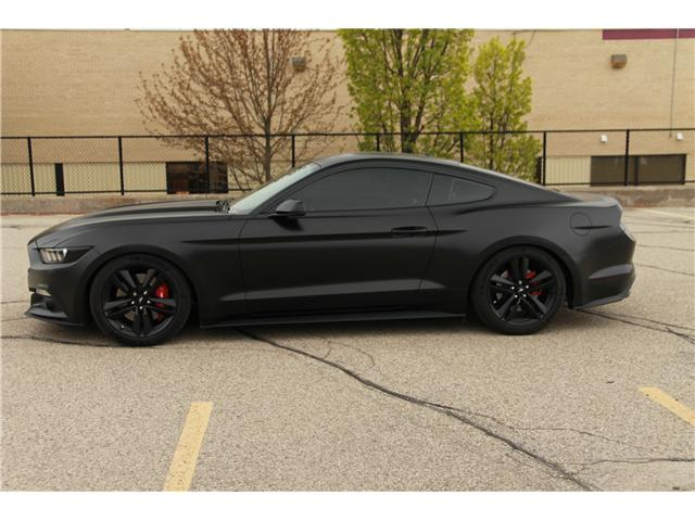 2016 Ford Mustang EcoBoost (Stk: 1905192) in Waterloo - Image 2 of 23