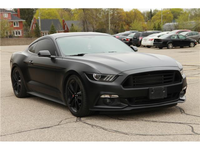 2016 Ford Mustang EcoBoost (Stk: 1905192) in Waterloo - Image 7 of 23