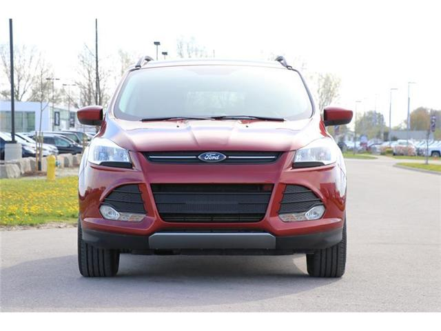 2015 Ford Escape SE (Stk: LU8616) in London - Image 2 of 20