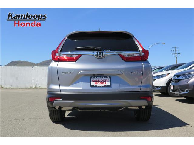 2019 Honda CR-V EX (Stk: N14462) in Kamloops - Image 5 of 8