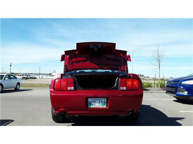 2005 Ford Mustang GT (Stk: ) in Brandon - Image 5 of 15