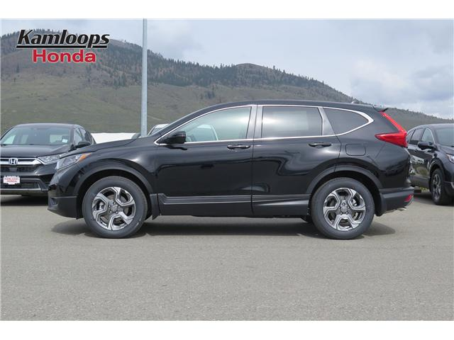 2019 Honda CR-V EX (Stk: N14487) in Kamloops - Image 3 of 8