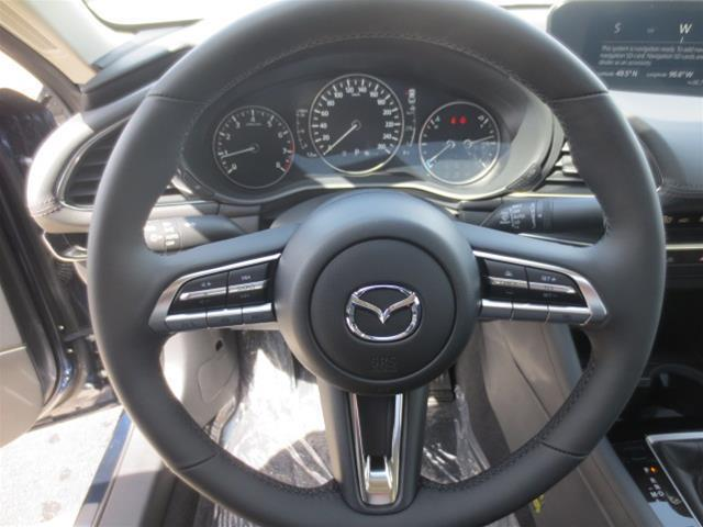 2019 Mazda Mazda3 GS (Stk: M19081) in Steinbach - Image 17 of 22