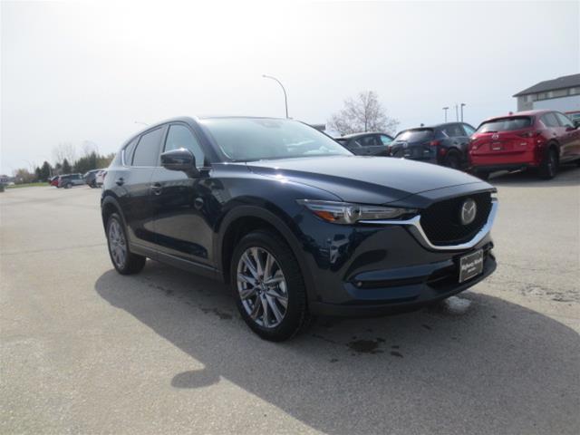 2019 Mazda CX-5 GT w/Turbo (Stk: M19086) in Steinbach - Image 3 of 22