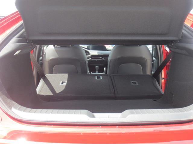 2019 Mazda Mazda3 Sport GS (Stk: M19103) in Steinbach - Image 10 of 22