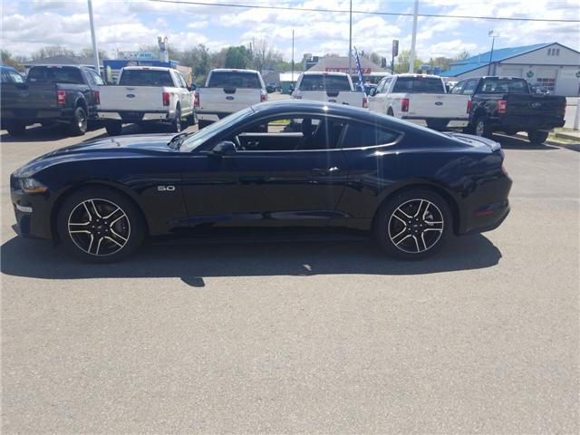 2019 Ford Mustang  (Stk: 19224) in Perth - Image 2 of 14