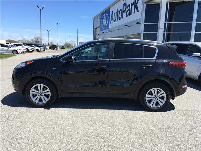 2019 Kia Sportage LX (Stk: 19-32763) in Barrie - Image 8 of 26