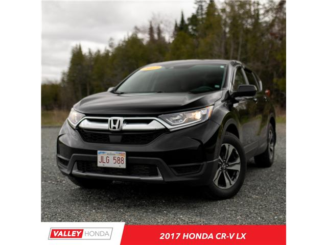 2017 Honda CR-V LX (Stk: U4182D) in Woodstock - Image 1 of 12