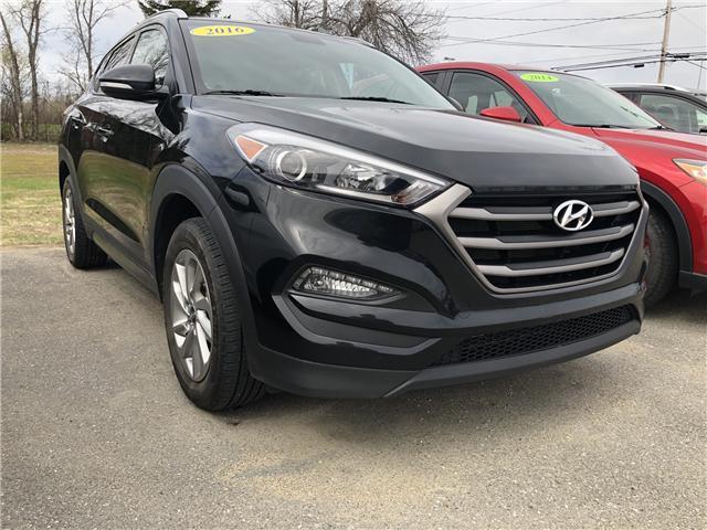 2016 Hyundai Tucson  (Stk: MM884) in Miramichi - Image 3 of 12