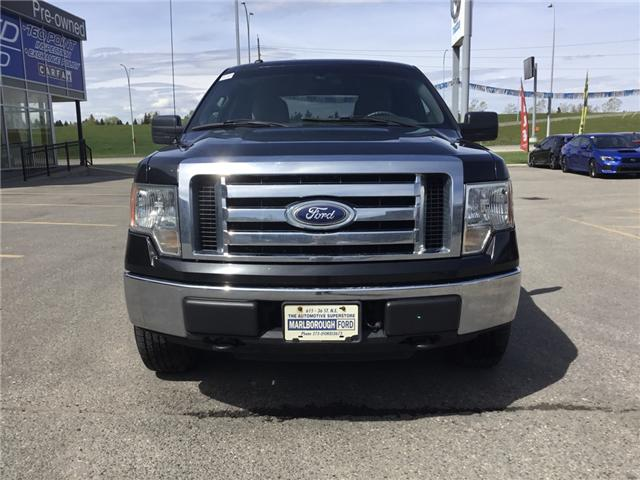 2010 Ford F-150 XLT (Stk: N4835AA) in Calgary - Image 2 of 15