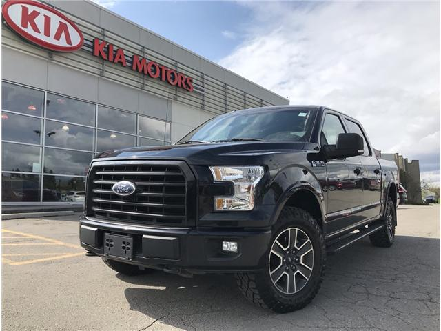 2016 Ford F-150 XLT (Stk: P0248) in Calgary - Image 1 of 21