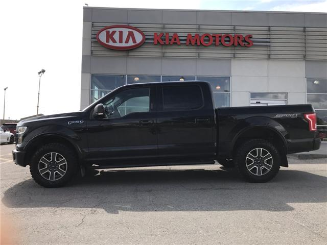 2016 Ford F-150 XLT (Stk: P0248) in Calgary - Image 2 of 21