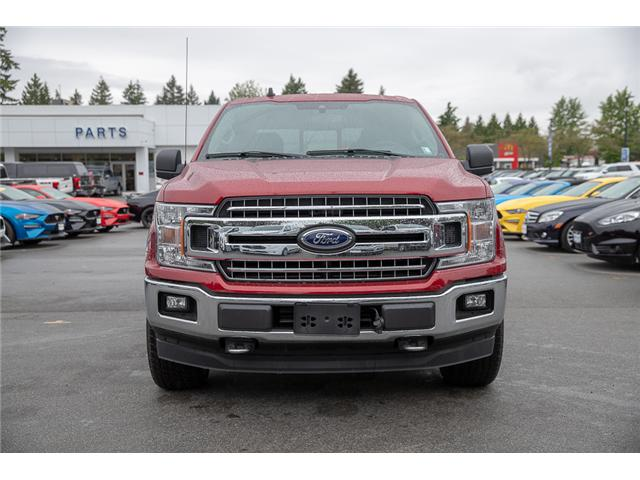 2019 Ford F-150 XLT (Stk: 9F13706) in Vancouver - Image 2 of 28