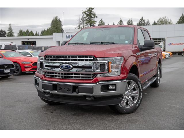 2019 Ford F-150 XLT (Stk: 9F13706) in Vancouver - Image 3 of 28