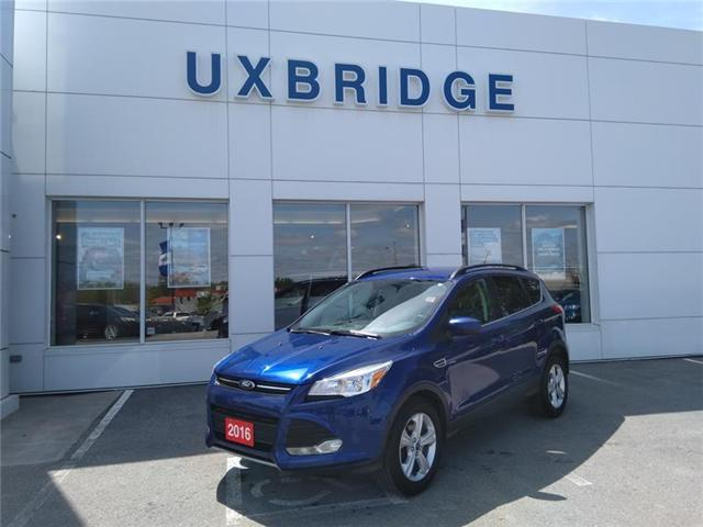 2016 Ford Escape SE (Stk: P1183) in Uxbridge - Image 1 of 12