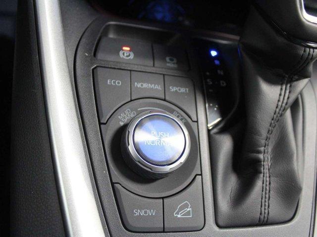 2019 Toyota RAV4 Limited (Stk: W023112) in Winnipeg - Image 23 of 30