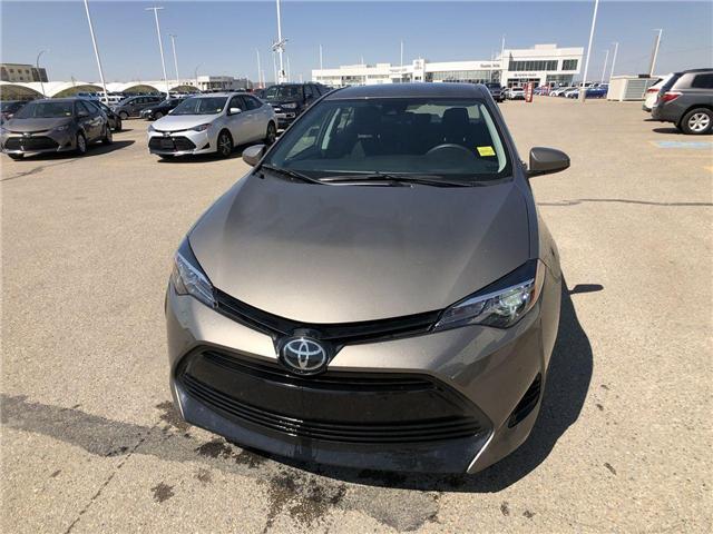 2019 Toyota Corolla  (Stk: 294089) in Calgary - Image 2 of 16
