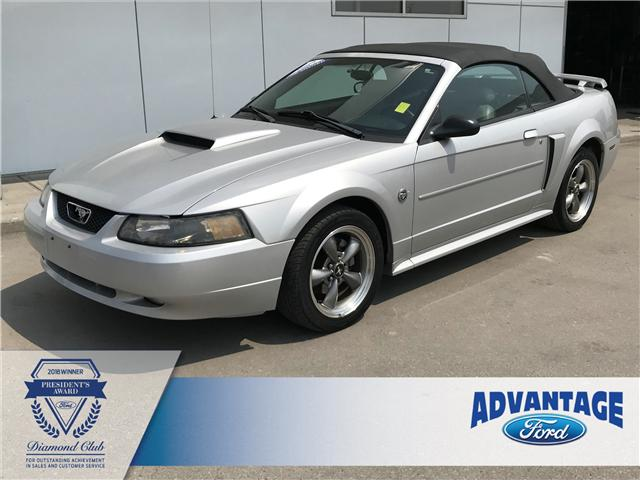 2004 Ford Mustang GT (Stk: 5428A) in Calgary - Image 1 of 12