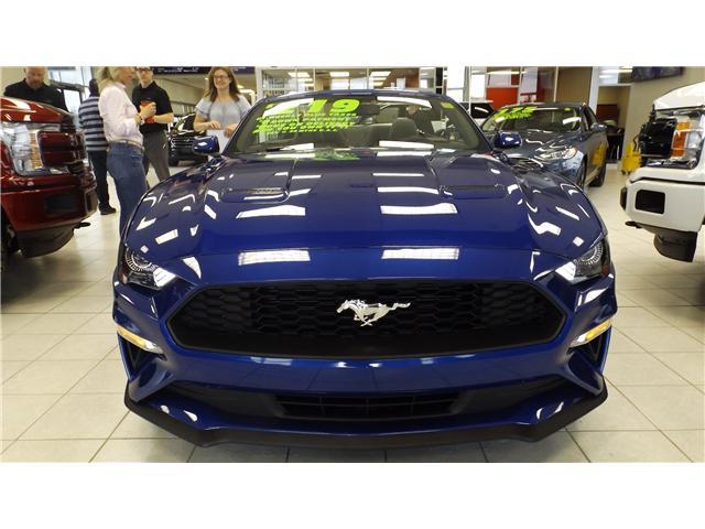 2018 Ford Mustang EcoBoost Premium (Stk: P48170) in Kanata - Image 3 of 19