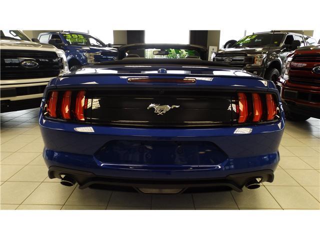 2018 Ford Mustang EcoBoost Premium (Stk: P48170) in Kanata - Image 7 of 19