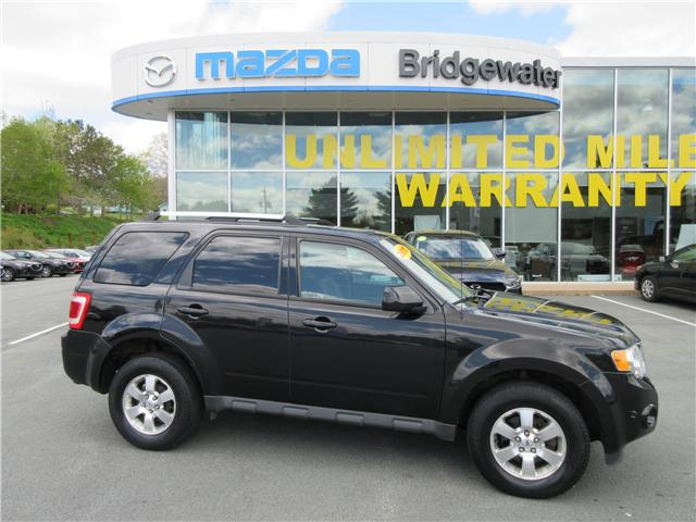 2011 Ford Escape Limited (Stk: 19059A) in Hebbville - Image 1 of 15