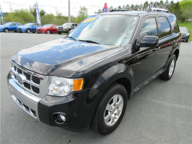 2011 Ford Escape Limited (Stk: 19059A) in Hebbville - Image 4 of 15