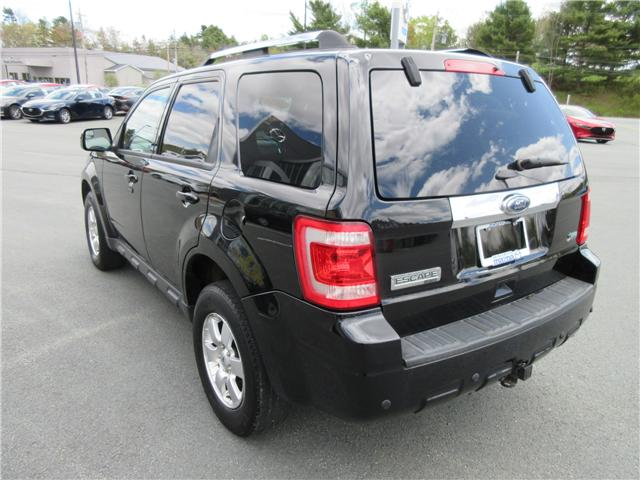 2011 Ford Escape Limited (Stk: 19059A) in Hebbville - Image 5 of 15
