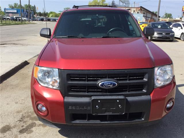 2012 Ford Escape XLT (Stk: 67) in Winnipeg - Image 8 of 15