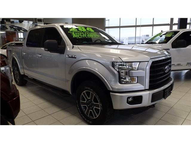 2016 Ford F-150 XLT (Stk: P48260) in Kanata - Image 3 of 13