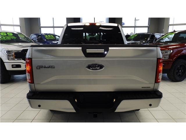 2016 Ford F-150 XLT (Stk: P48260) in Kanata - Image 5 of 13