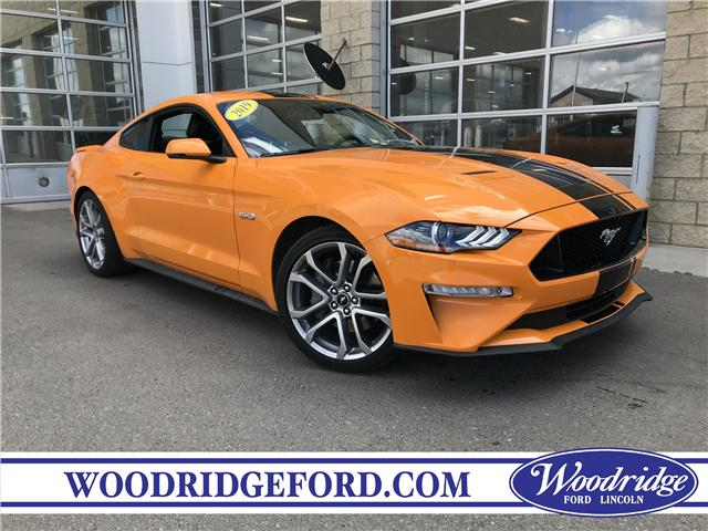 2019 Ford Mustang GT (Stk: 17260) in Calgary - Image 1 of 19