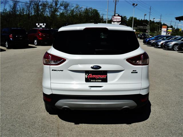 2015 Ford Escape SE (Stk: 1486) in Orangeville - Image 5 of 20