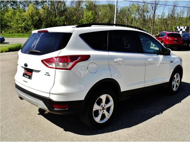 2015 Ford Escape SE (Stk: 1486) in Orangeville - Image 6 of 20