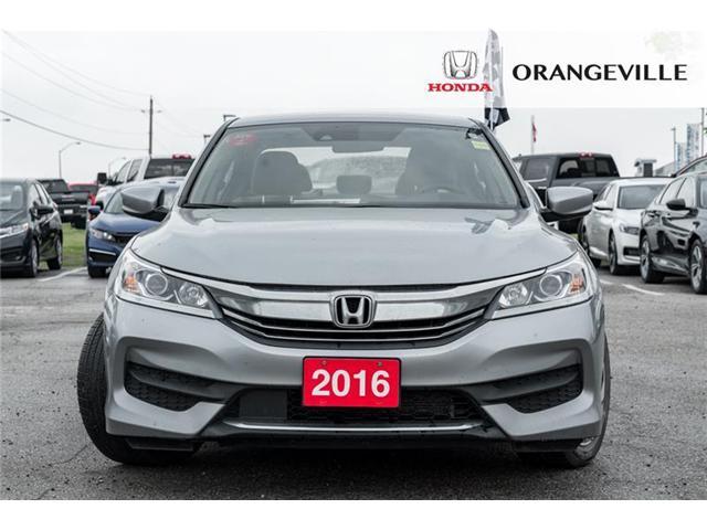 2016 Honda Accord LX (Stk: Y19037A) in Orangeville - Image 2 of 19