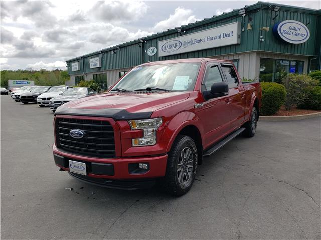 2016 Ford F-150 XLT (Stk: 10412) in Lower Sackville - Image 1 of 17