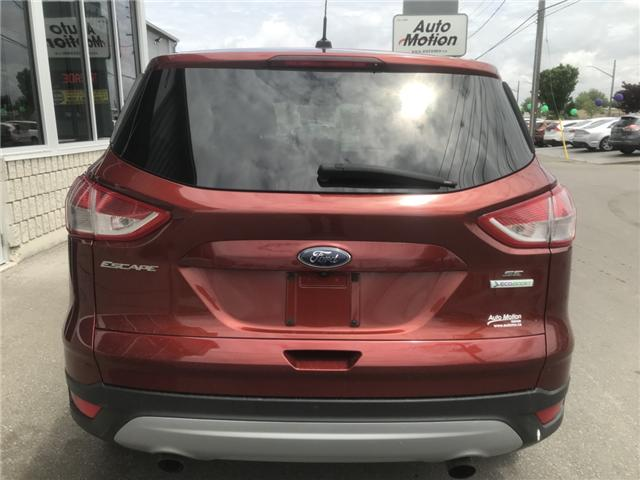 2014 Ford Escape SE (Stk: 19522) in Chatham - Image 5 of 20