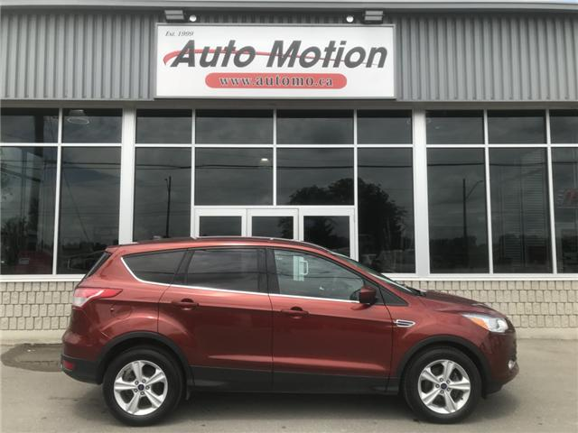 2014 Ford Escape SE (Stk: 19522) in Chatham - Image 3 of 20