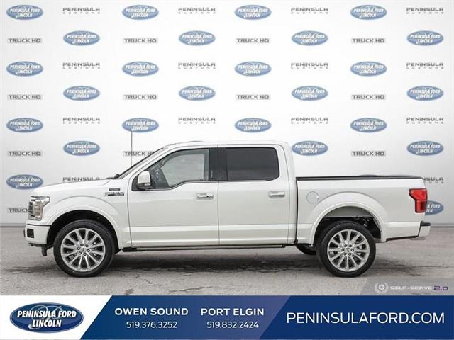 2019 Ford F-150 Limited (Stk: 19FE82) in Owen Sound - Image 3 of 24