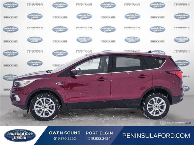 2019 Ford Escape SE (Stk: 19ES34) in Owen Sound - Image 3 of 24