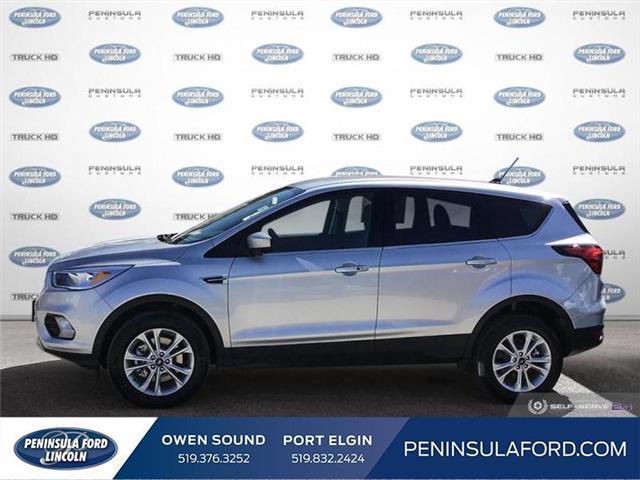 2019 Ford Escape SE (Stk: 19ES35) in Owen Sound - Image 3 of 25