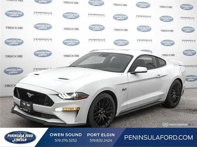 2019 Ford Mustang GT (Stk: 19MU04) in Owen Sound - Image 1 of 25