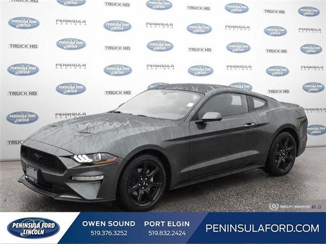 2019 Ford Mustang EcoBoost (Stk: 19MU08) in Owen Sound - Image 1 of 25
