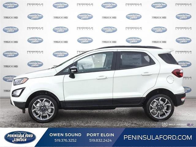 2019 Ford EcoSport SES (Stk: 19EC04) in Owen Sound - Image 3 of 24
